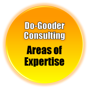 Do Gooder Consulting Areas of Expertise button